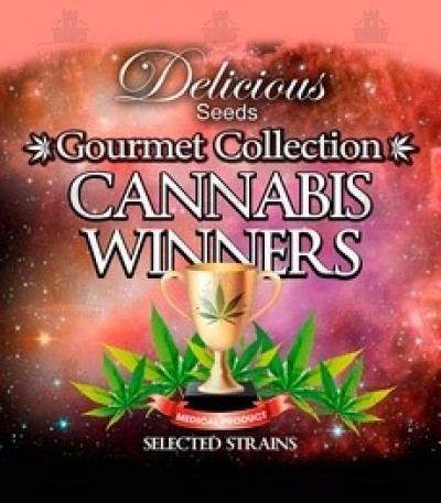 Микс семян Gourmet Collection - Cannabis Winner Strains #2 (Delicious Seeds)
